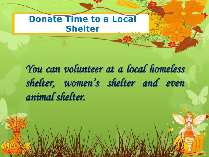 Donate Time to a Local Shelter