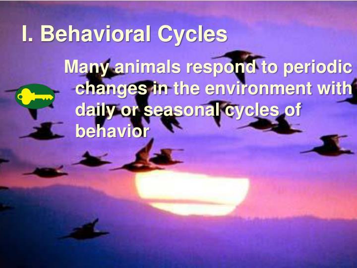 I. Behavioral Cycles