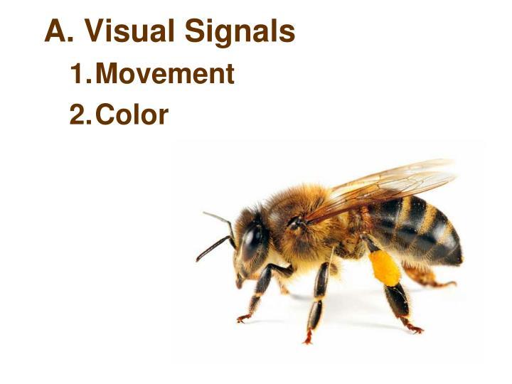A. Visual Signals