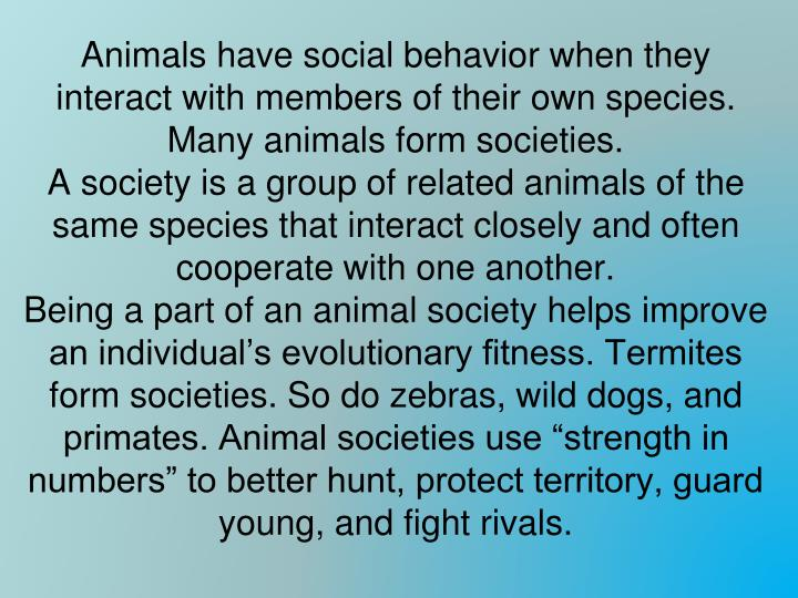 Animals have social behavior when they interact with members of their own species. Many animals form societies.