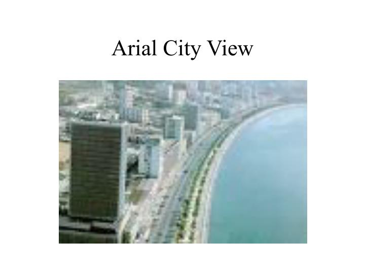 Arial City View