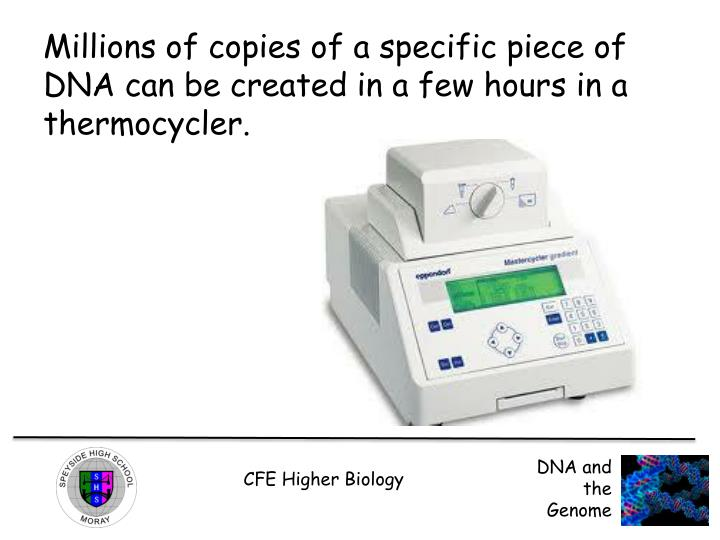 Millions of copies of a specific piece of DNA can be created in a few hours in a thermocycler.