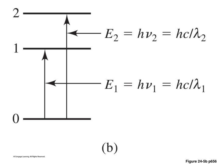 Figure 24-5b p656