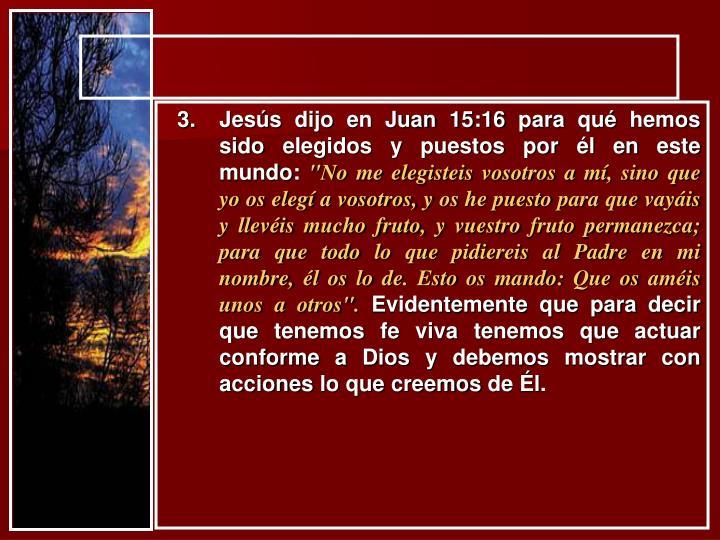 Jesús dijo en Juan 15:16 para qué hemos sido elegidos y puestos por él en este mundo: