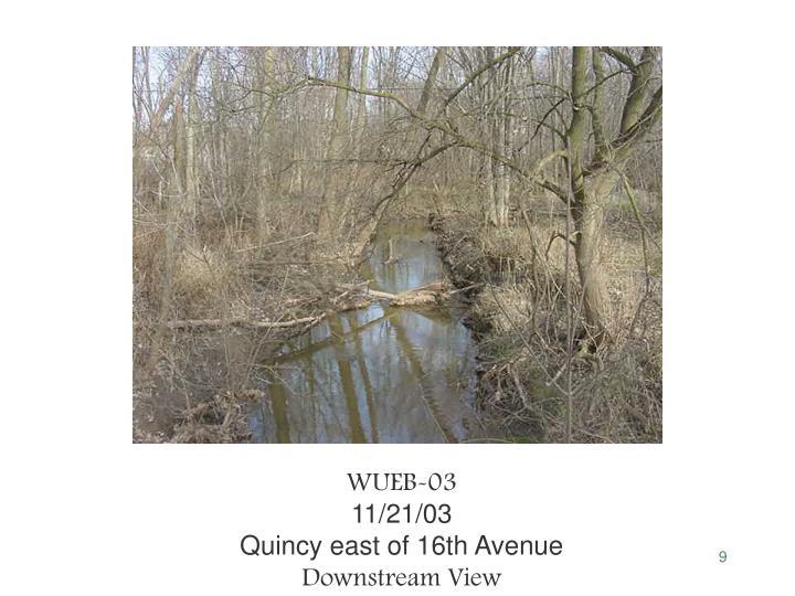 WUEB-03