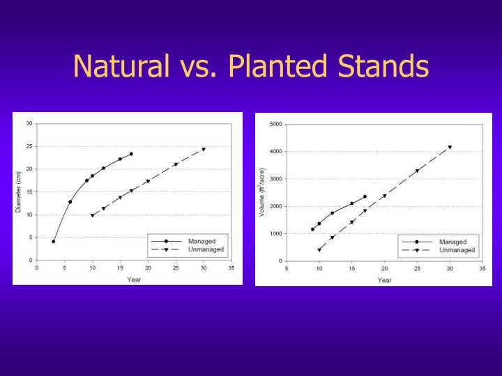 Natural vs. Planted Stands