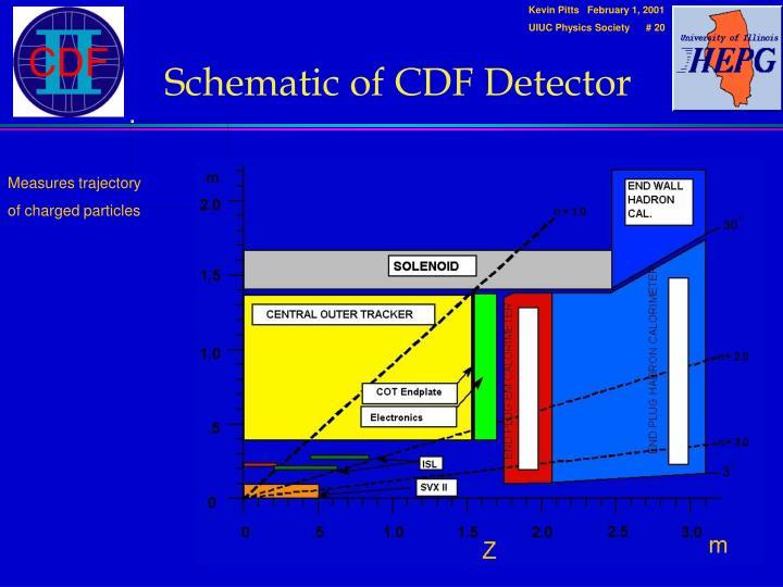Schematic of CDF Detector