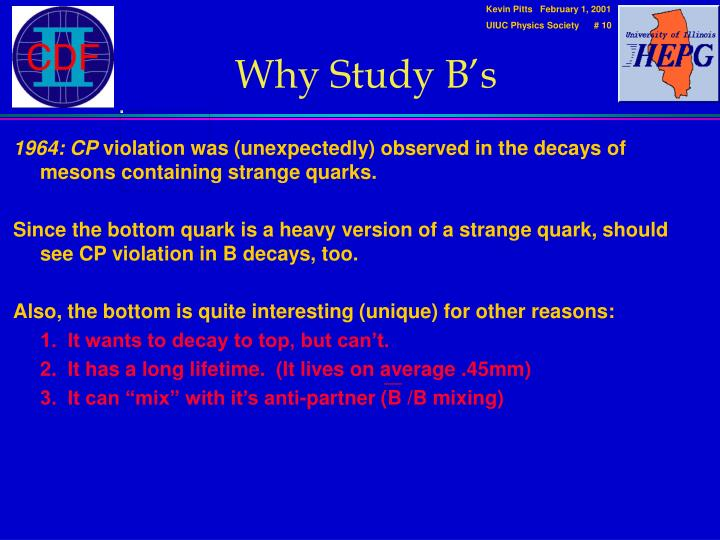 Why Study B's