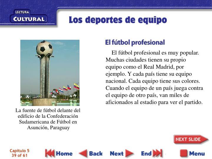 El fútbol profesional es muy popular. Muchas ciudades tienen su propio equipo como el Real Madrid, por ejemplo. Y cada país tiene su equipo nacional. Cada equipo tiene sus colores. Cuando el equipo de un país juega contra el equipo de otro país, van miles de aficionados al estadio para ver el partido.
