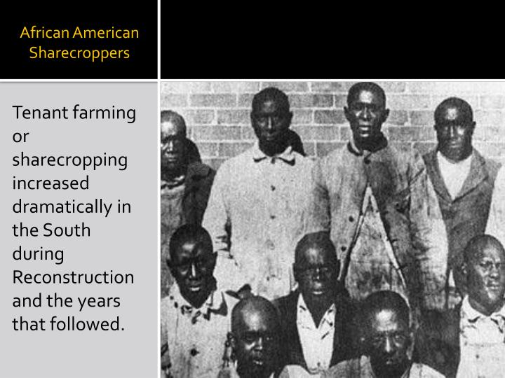 African American Sharecroppers