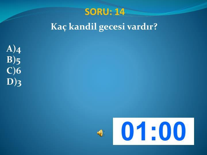 SORU: 14