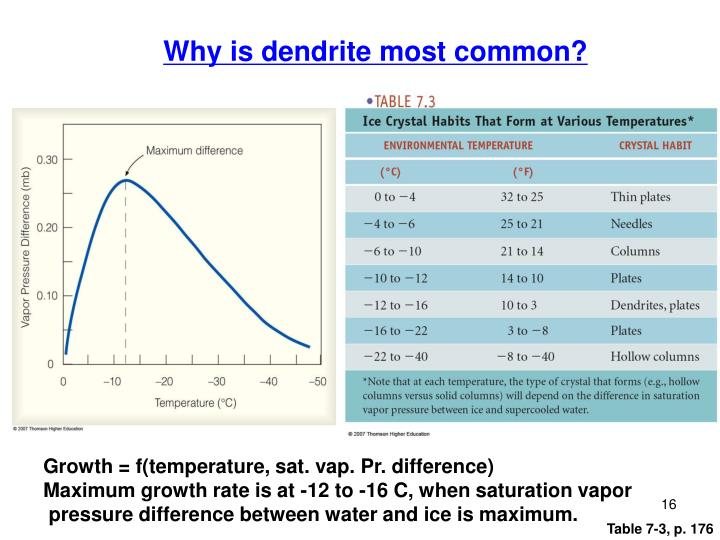 Why is dendrite most common?