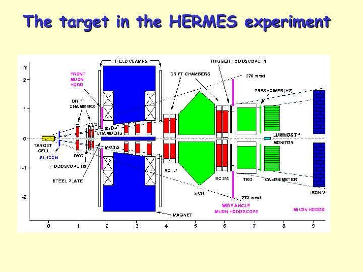 The target in the HERMES experiment