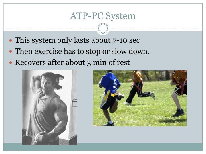 ATP-PC System