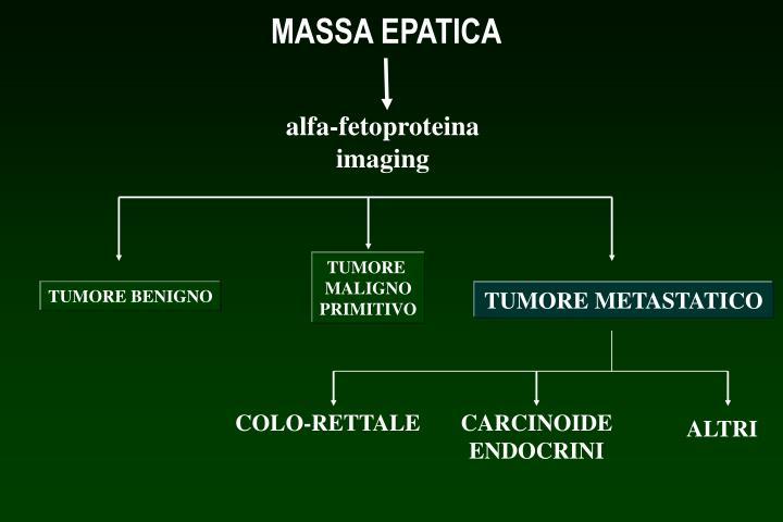 MASSA EPATICA