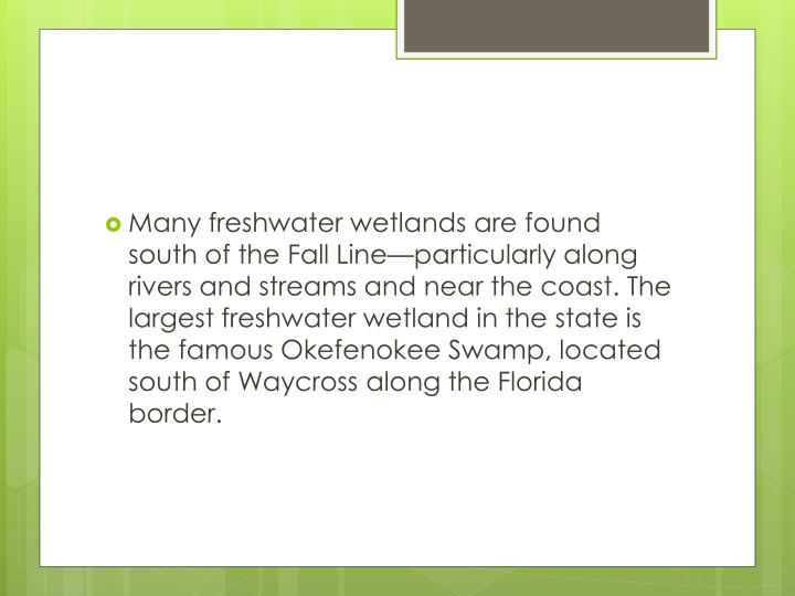 Many freshwater wetlands