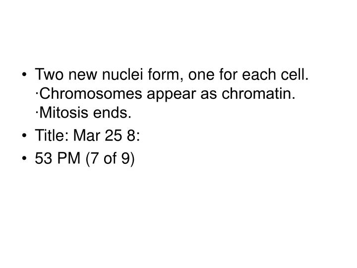 Two new nuclei form, one for each cell. ∙Chromosomes appear as chromatin. ∙Mitosis ends.