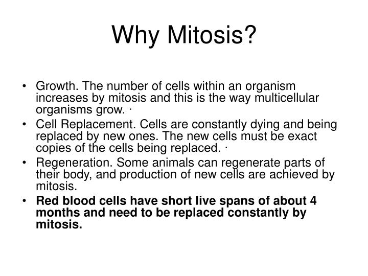 Why Mitosis?