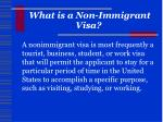what is a non immigrant visa