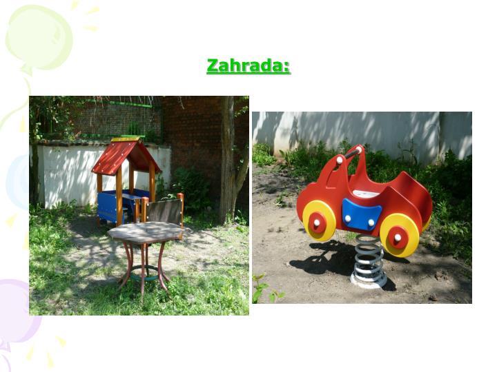 Zahrada: