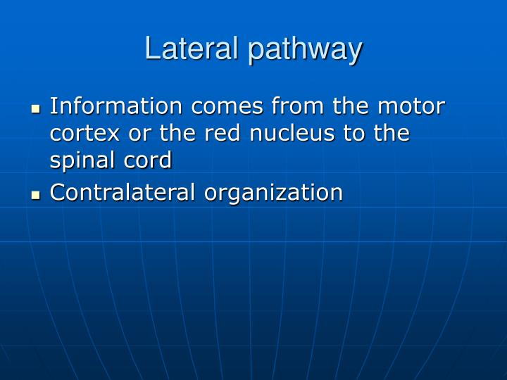 Lateral pathway