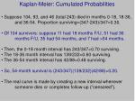 kaplan meier cumulated probabilities1