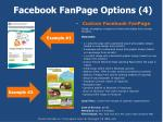 facebook fanpage options 4