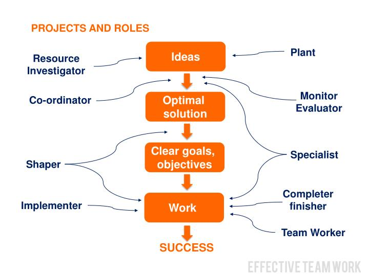 PROJECTS AND ROLES