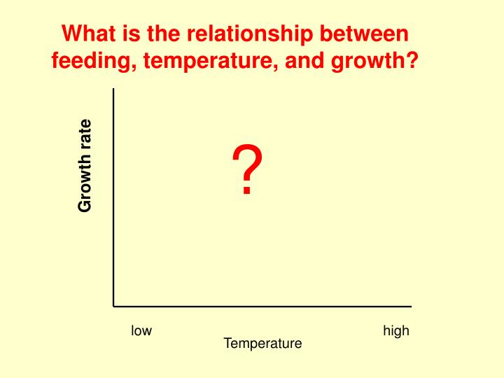 What is the relationship between feeding, temperature, and growth?