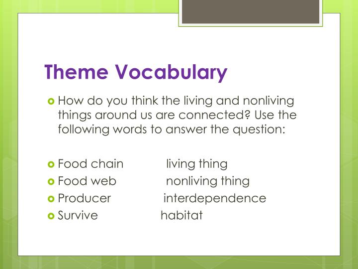 Theme Vocabulary