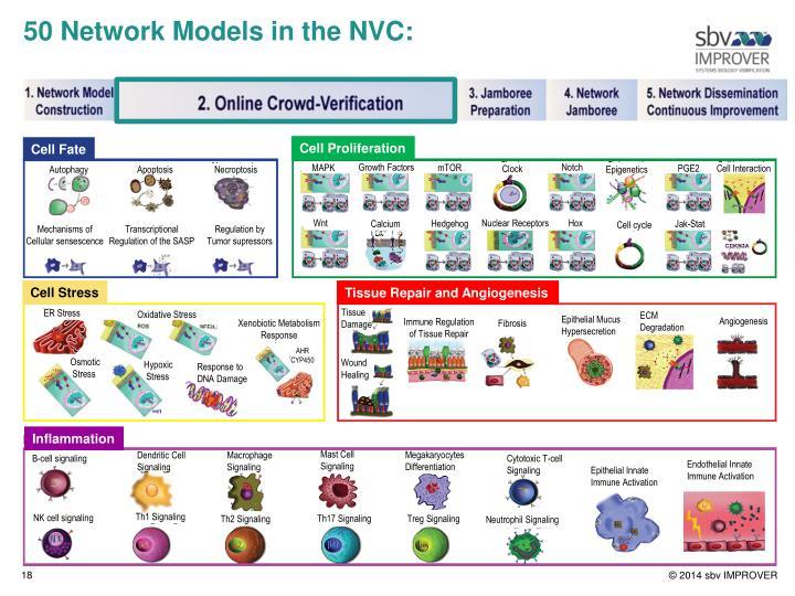 50 Network Models