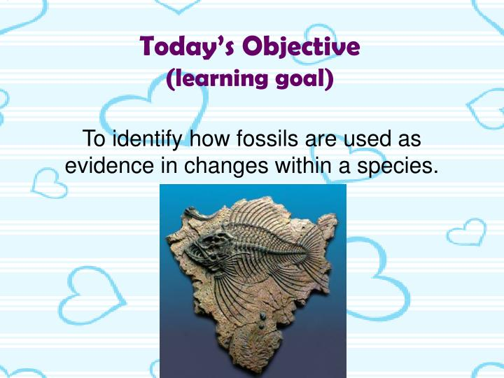What is the difference between relative and absolute fossil dating