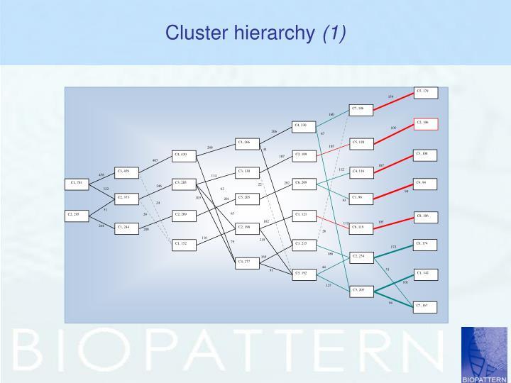 Cluster hierarchy