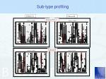 sub type profiling