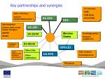 key partnerships and synergies