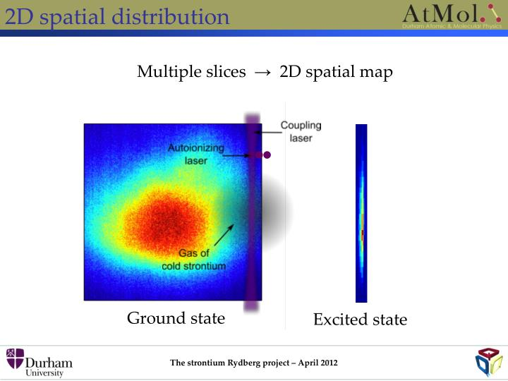 2D spatial distribution