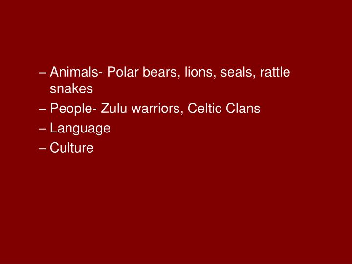 Animals- Polar bears, lions, seals, rattle snakes