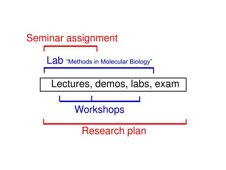 Seminar assignment