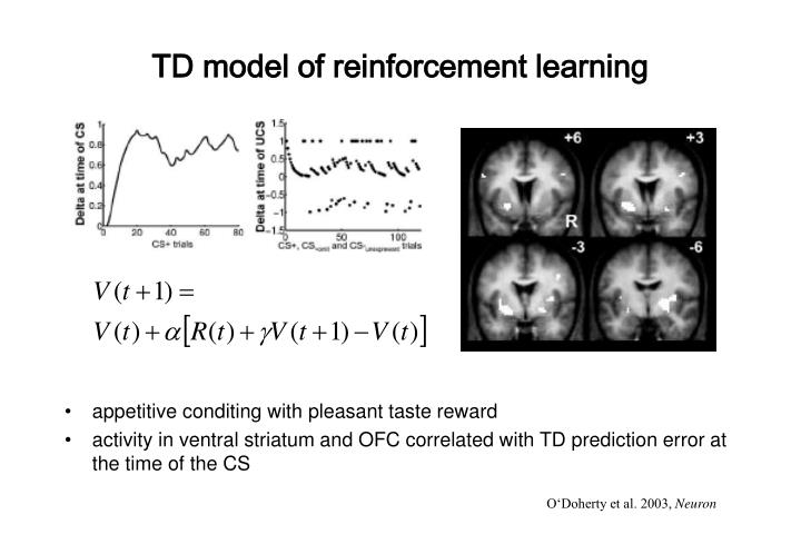 TD model of reinforcement learning