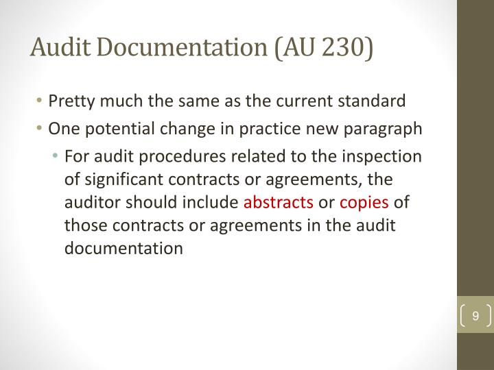Audit Documentation (AU 230)