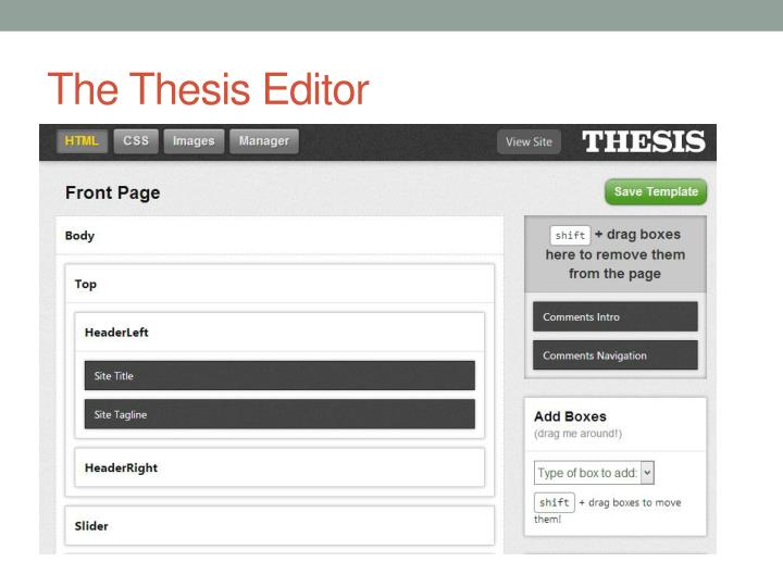 The Thesis Editor