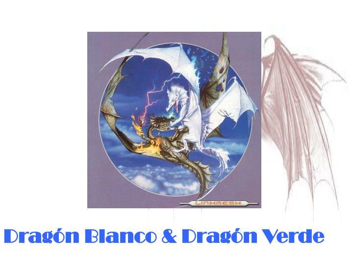 Dragón Blanco & Dragón Verde