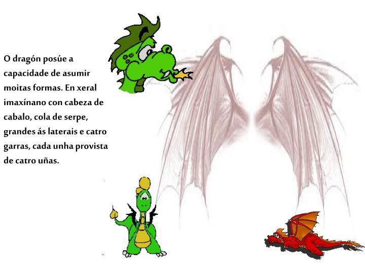 O dragón posúe a capacidade de asumir moitas formas. En xeral imaxínano con cabeza de cabalo, cola de serpe, grandes ás laterais e catro garras, cada unha provista de catro uñas.