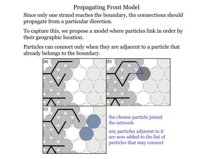Propagating Front Model