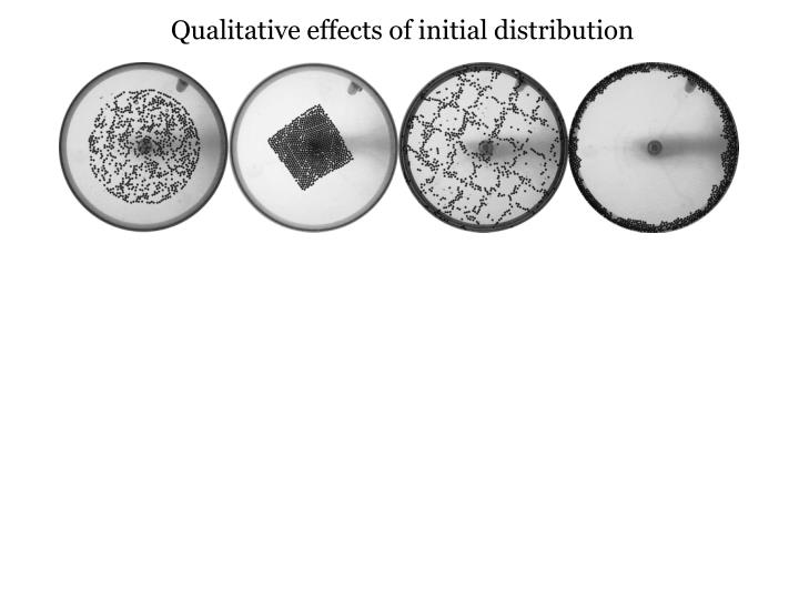 Qualitative effects of initial distribution