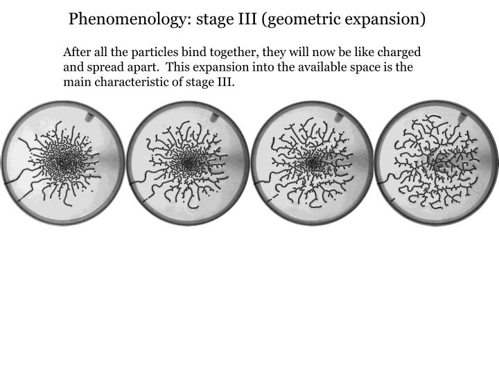 Phenomenology: stage III (geometric expansion)