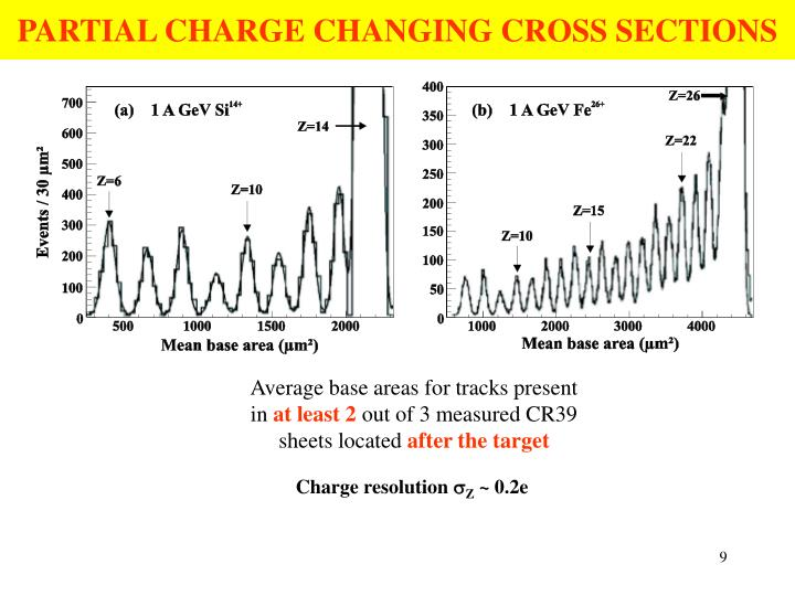 PARTIAL CHARGE CHANGING CROSS SECTIONS