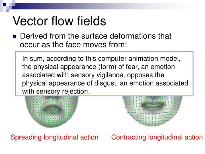 In sum, according to this computer animation model, the physical appearance (form) of fear, an emotion associated with sensory vigilance, opposes the physical appearance of disgust, an emotion associated with sensory rejection.