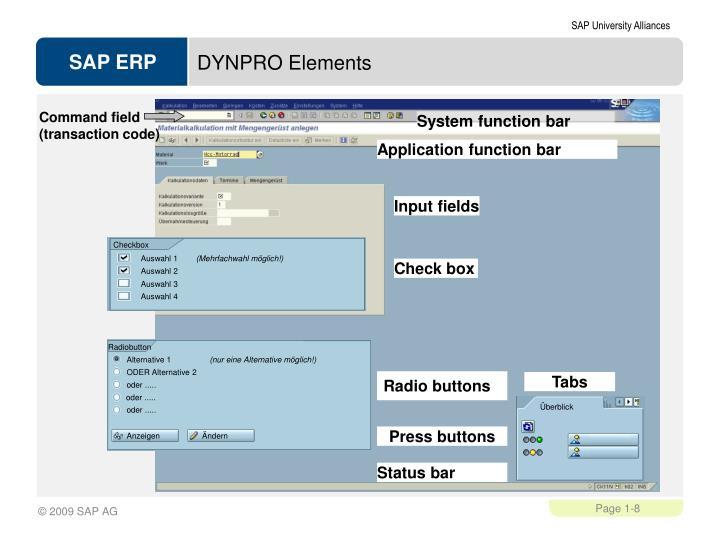 DYNPRO Elements