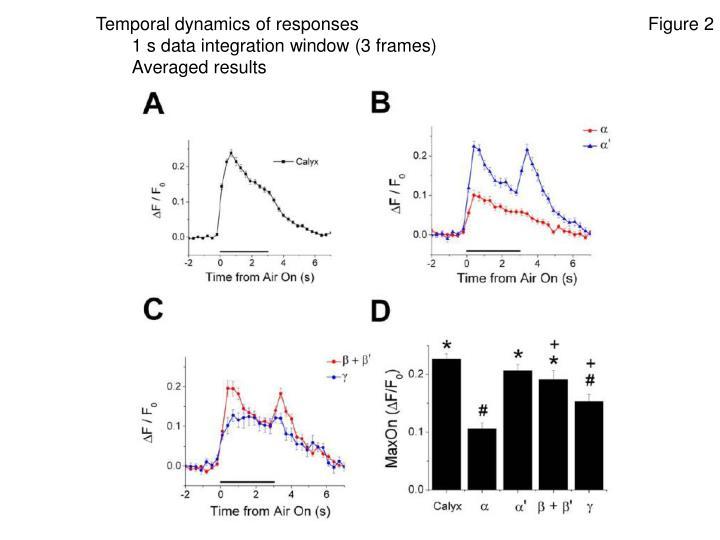 Temporal dynamics of responses